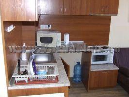 Микроволновая и обыкновенная электрическая печка на кухне нашего апартамента с полным комплектом посуды.